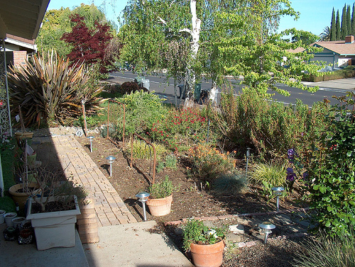 4-thoughtful-ways-to-increase-your-homes-curb-appeal