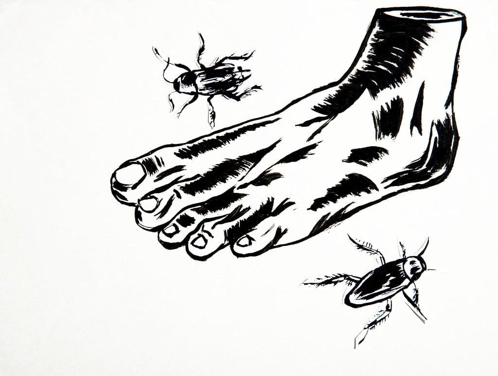 Roachfoot.jpg