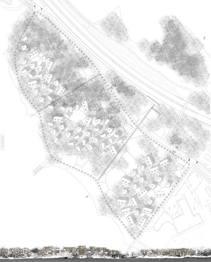 Planimetria e sezione di progetto.