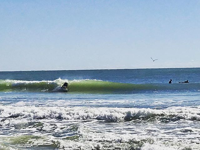 The swell forecast for Surf City is looking perfect for surf lessons for the next 5 days! If you've been wanting to give surfing a try, these conditions are top notch for beginners. So come by and see us or call and set up your lesson today! We also have wetsuits available upon request if you want to stay nice and toasty out in the water.
