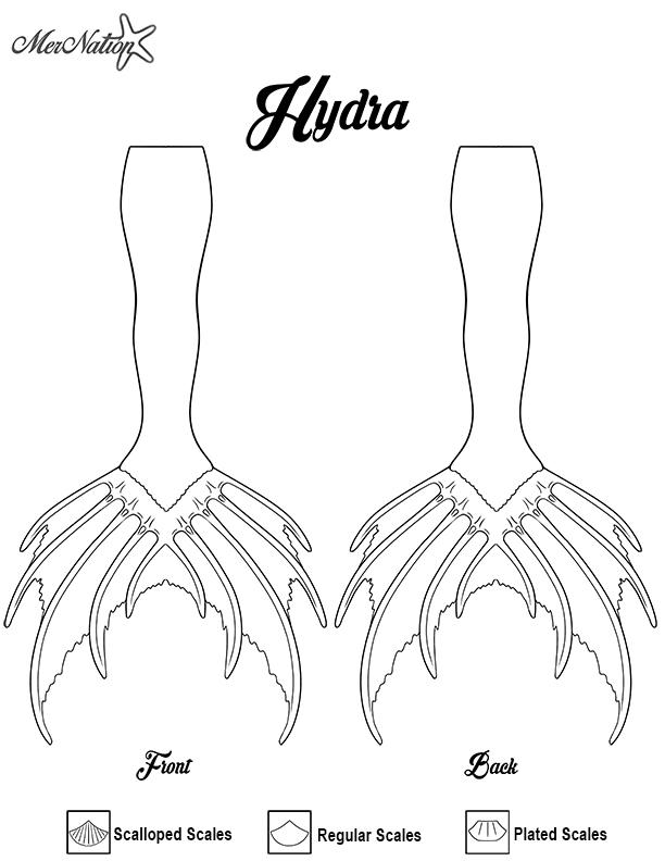 HYDRA-2.jpg