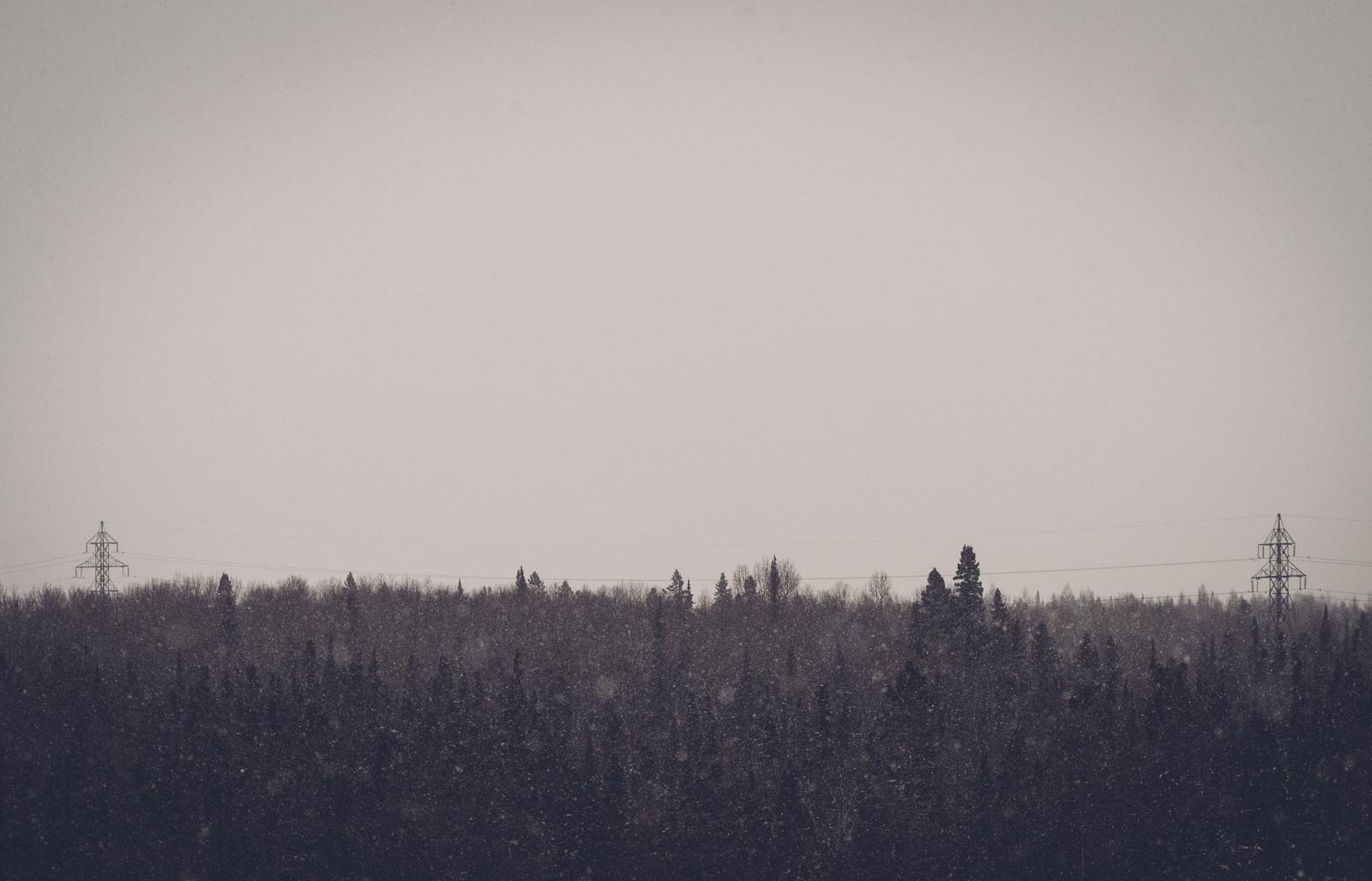 terry_fox_winter_blog3.jpg