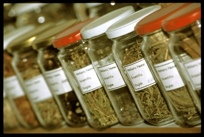 Herbs are soaked in water and a small amount of ethanol to make tinctures.