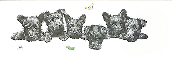 """Curious Companions"": The butterfly and caterpillar in the print are hand-colored by the artist for you at no additional charge. Edition size: 250, each signed and numbered by the artist. Image size: 8"" x 20"". From $95"