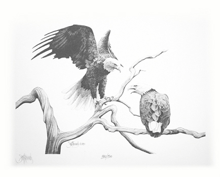 """Bald Eagles""    - Only 3 prints available in this   limited edition. Image size: 8""x10"" f  rom $45."