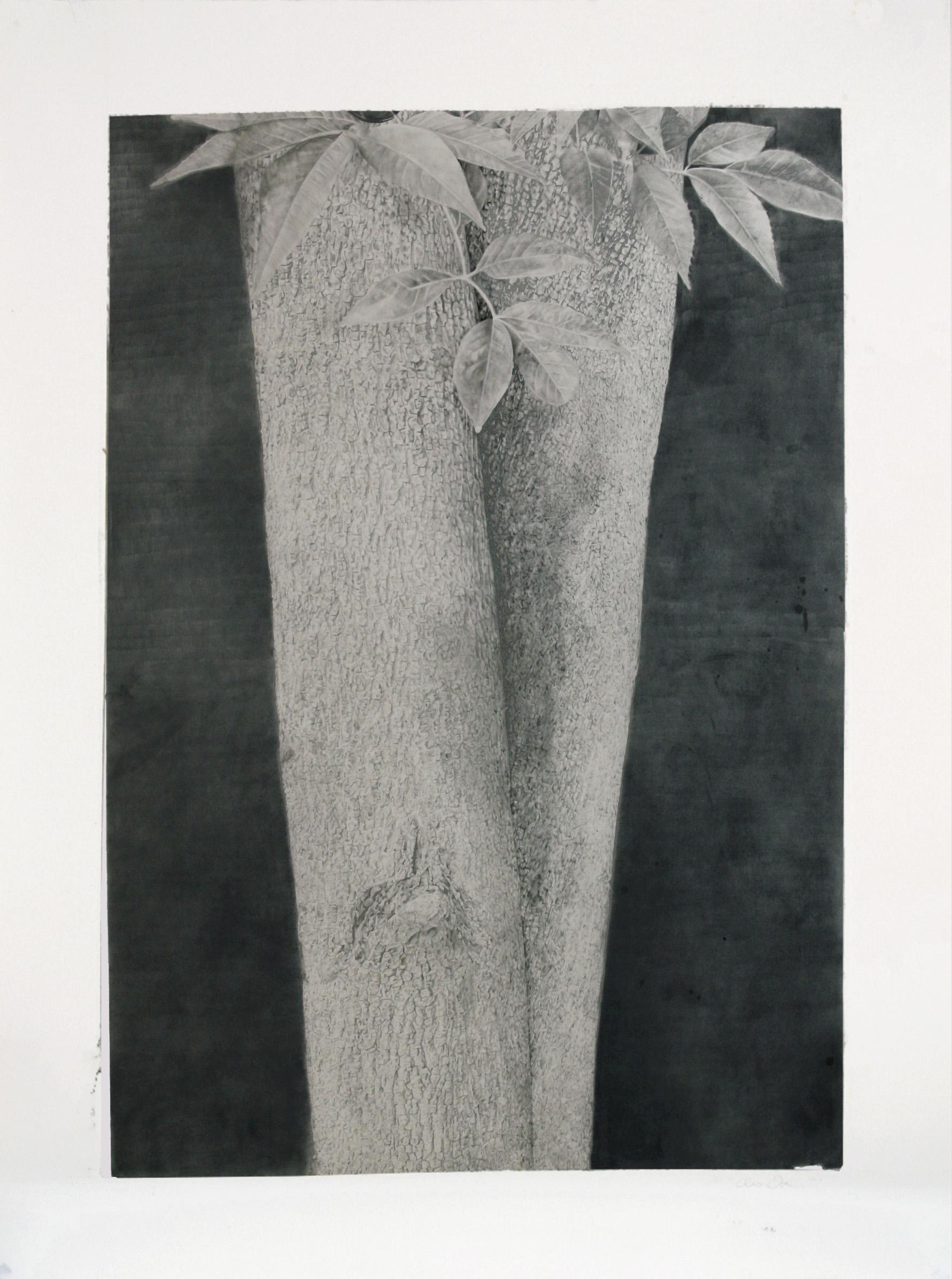 """Treeform II, 38""""x50"""", 2010"""