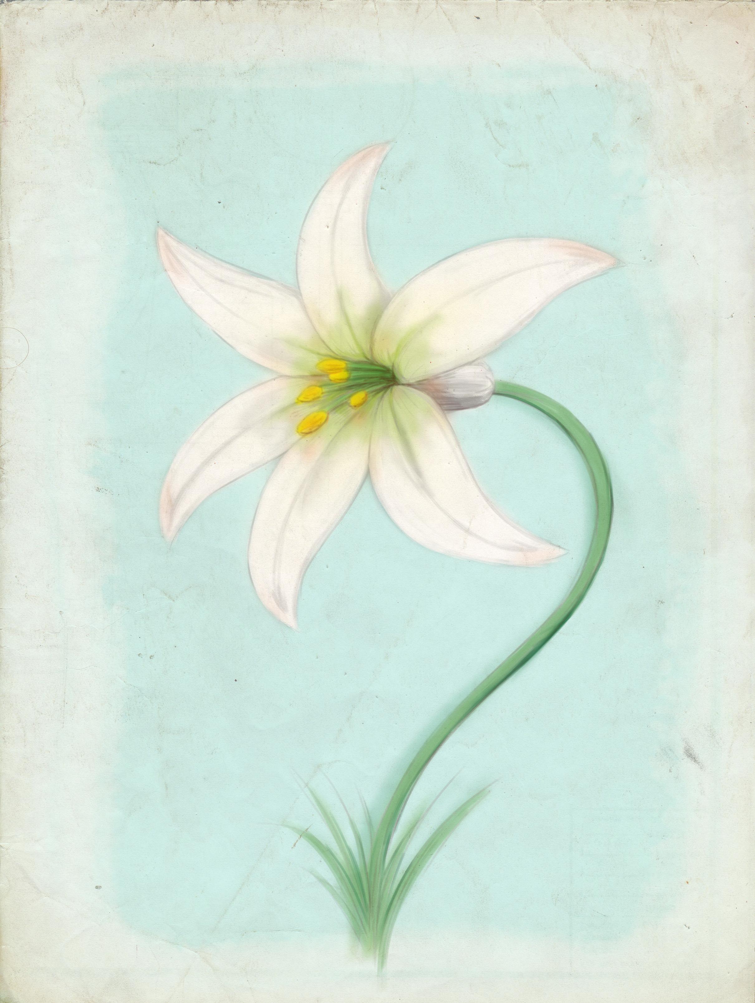 FlowerArt_v01.png