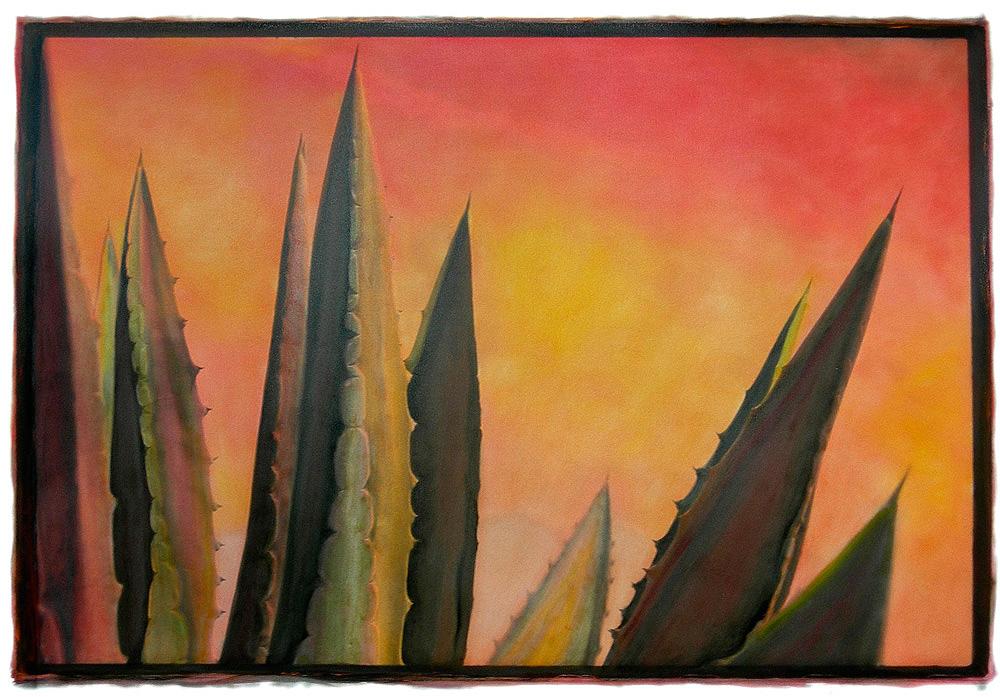 Cactus-Sunset-1.jpg
