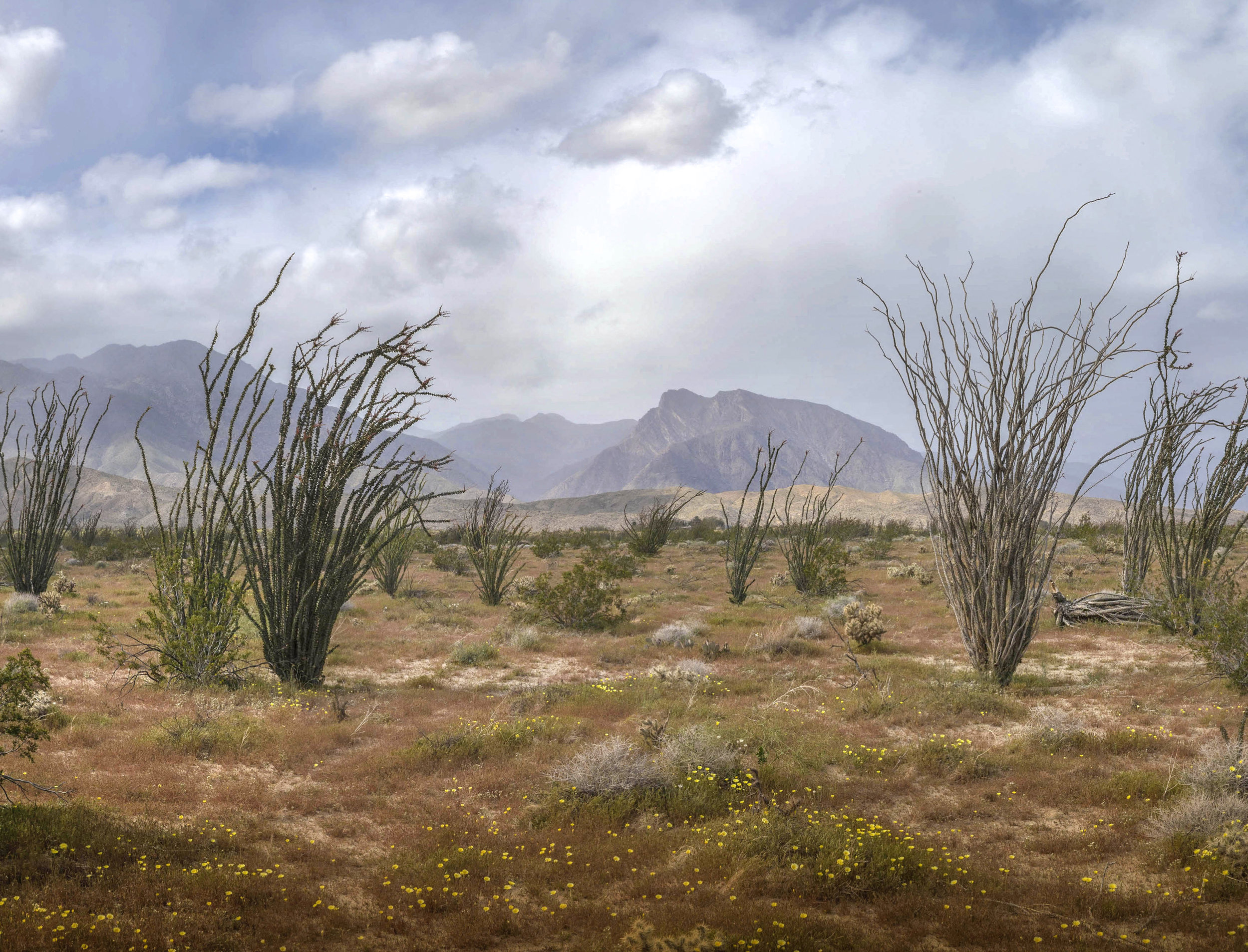 Montezuma Canyon04.jpg