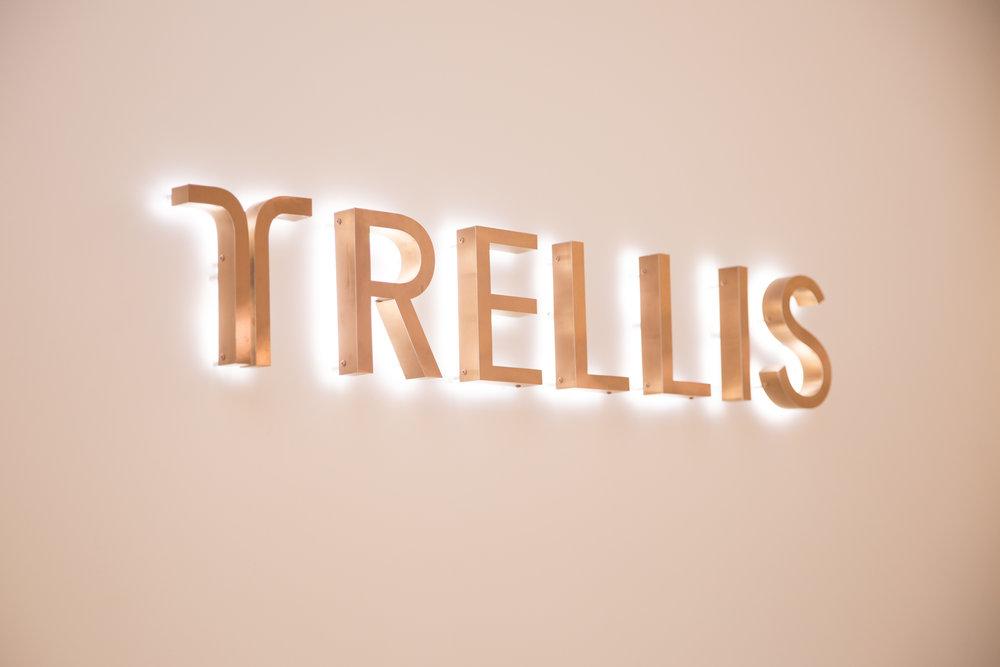 trellis6.jpg