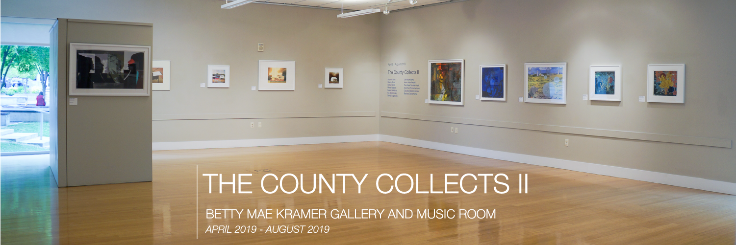 The County Collects II - Squarespace Banner