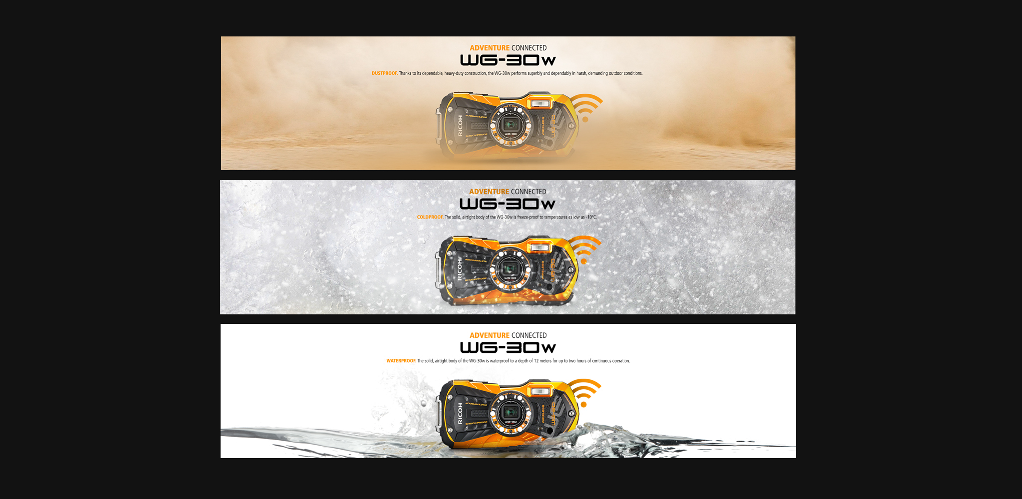 RICOH_Web_Banners.jpg