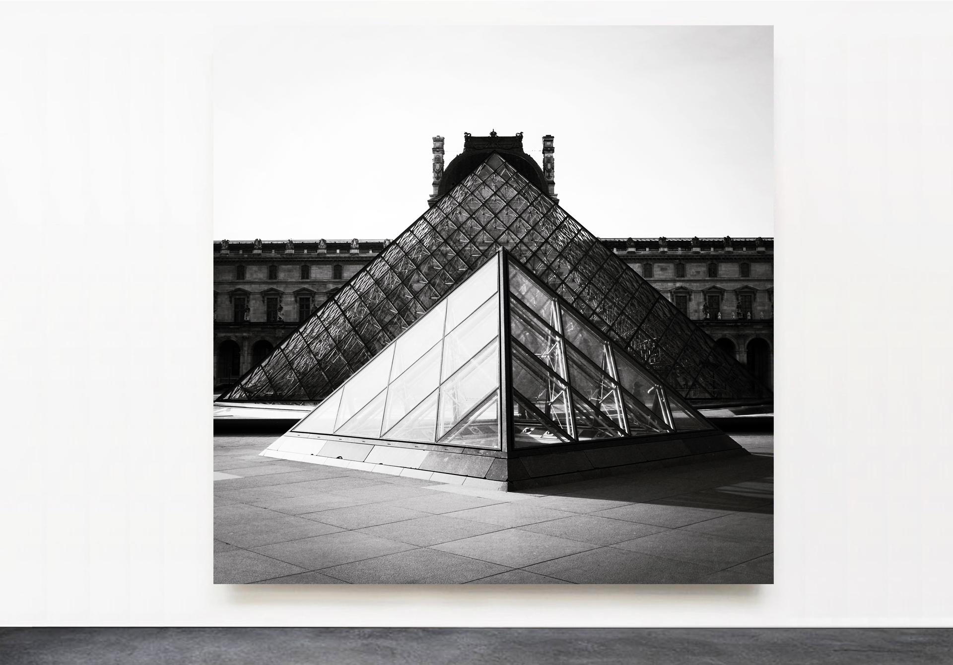 PANTUSO_PHOTOGRAPHY_VIOLA_LOUVRE_PARIS.jpg