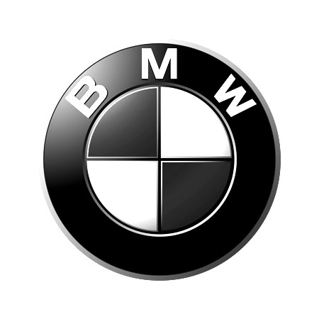 Saam_Gabbay_BMW_Logo_Project.jpg