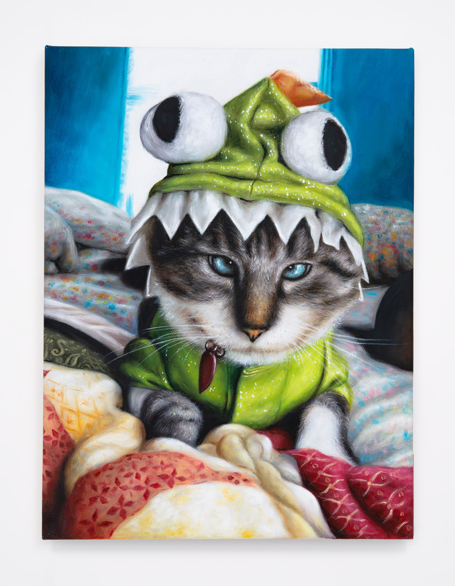 2015-Frog-Kitty---Blue-Lynx-Point.jpg