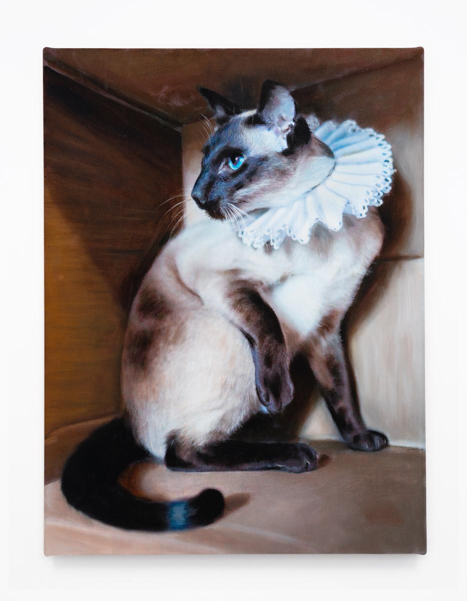 2016-Elizabethan-Kitty---Chocolate-Point.jpg