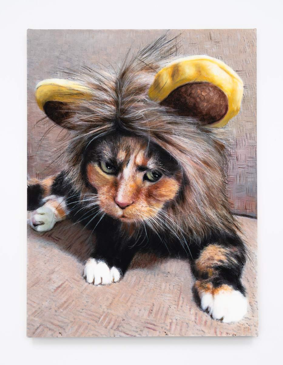 2016-Lion-Kitty---Tortoiseshell-II.jpg