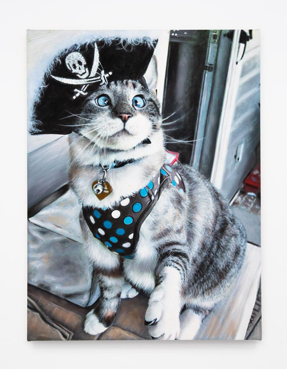 2016-Pirate-Kitty---Silver-Tabby.jpg