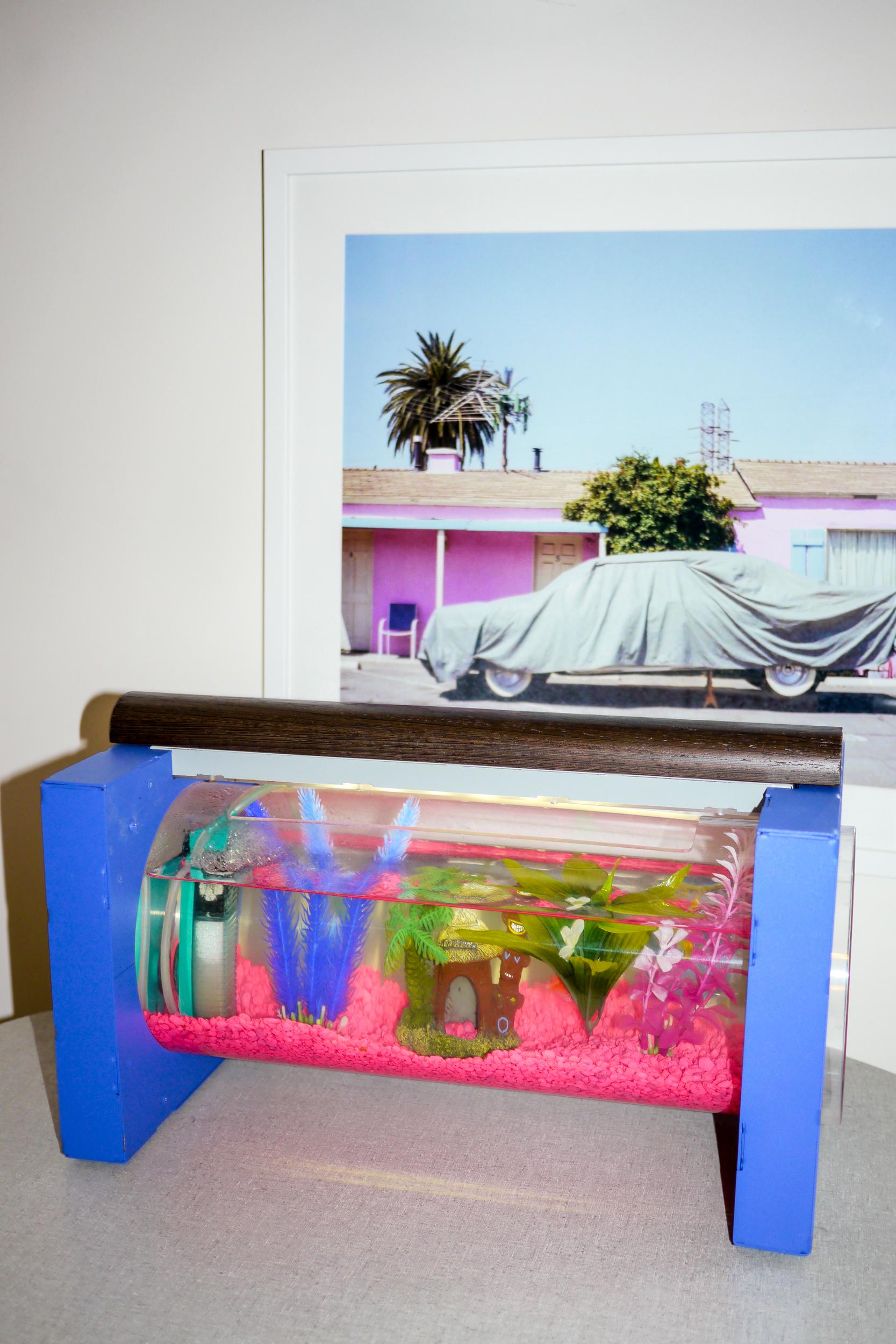 Fish Tank, Studio Banan