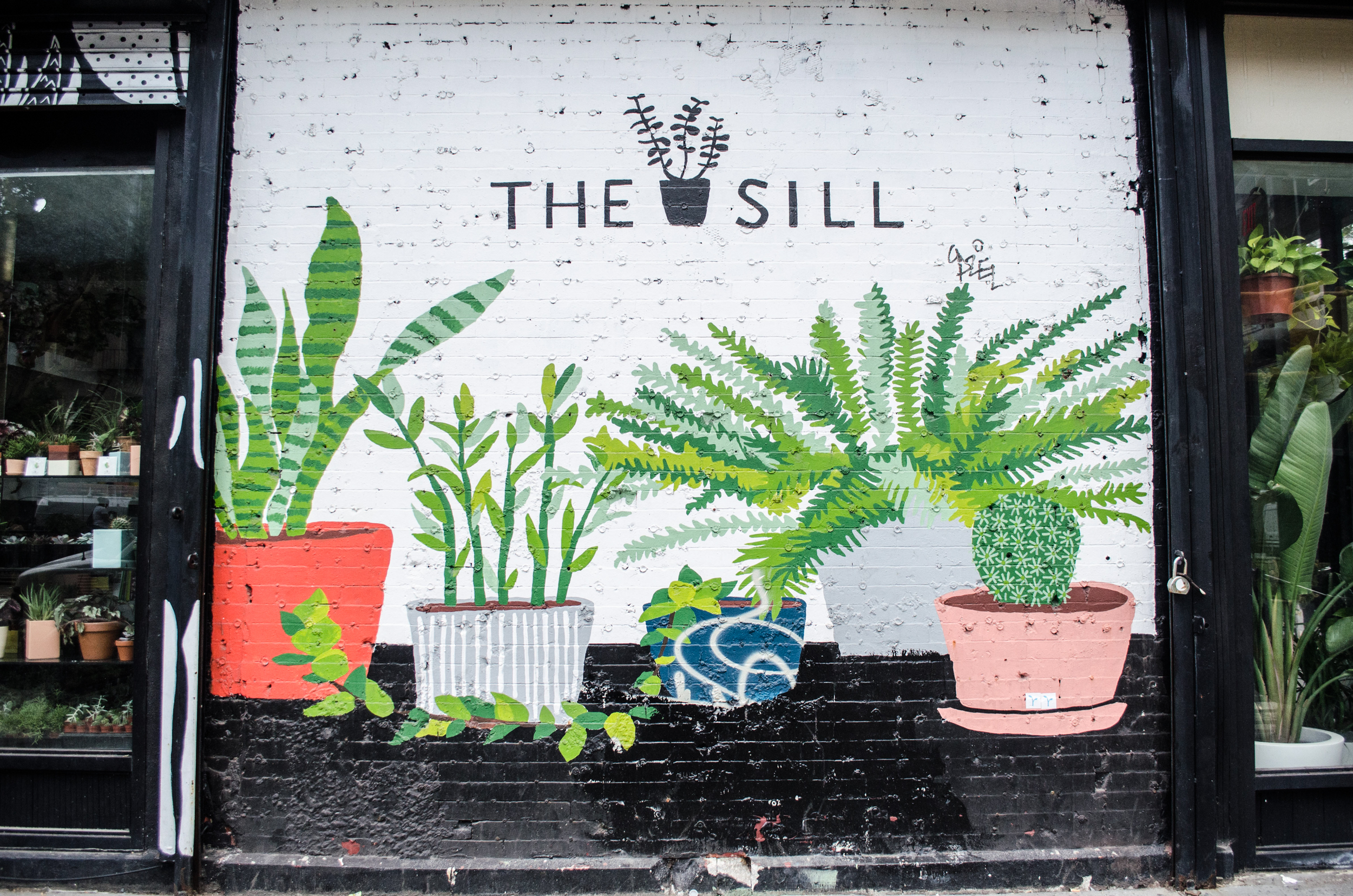 the sill passerbuys