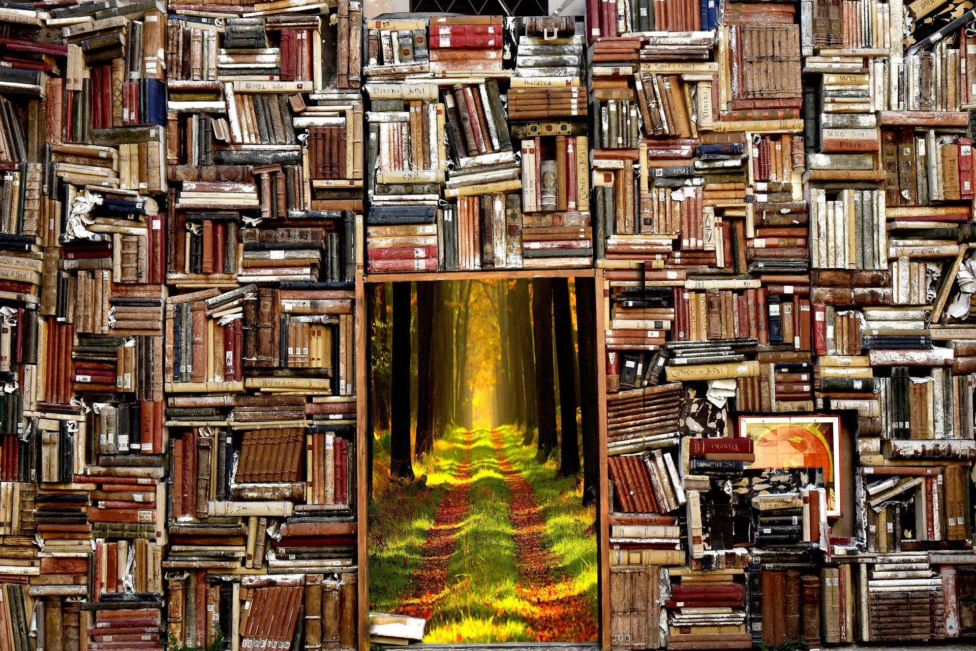 The Books - I write fiction and nonfiction for adults and kid's. A little something for everyone.