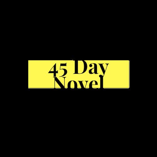45 Day Novel Logo Header.png