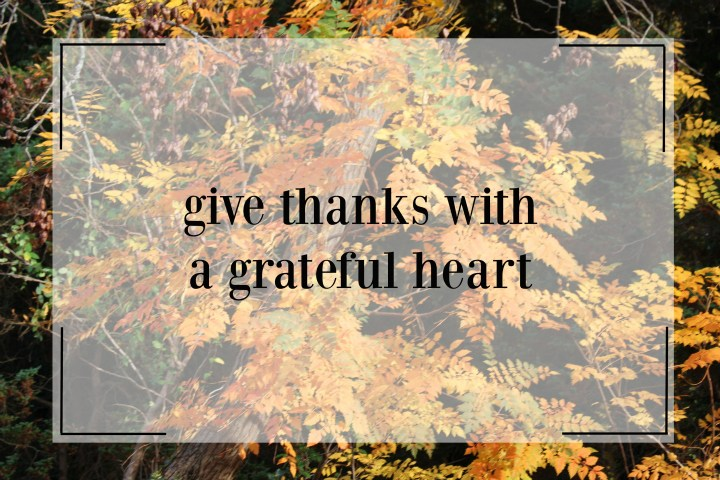 thanksgivingquote.jpg
