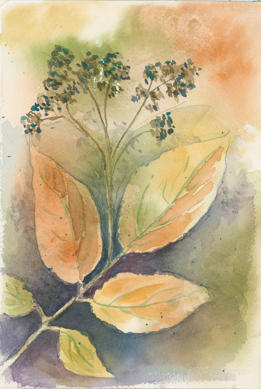 Jones art - leaves berries.jpg