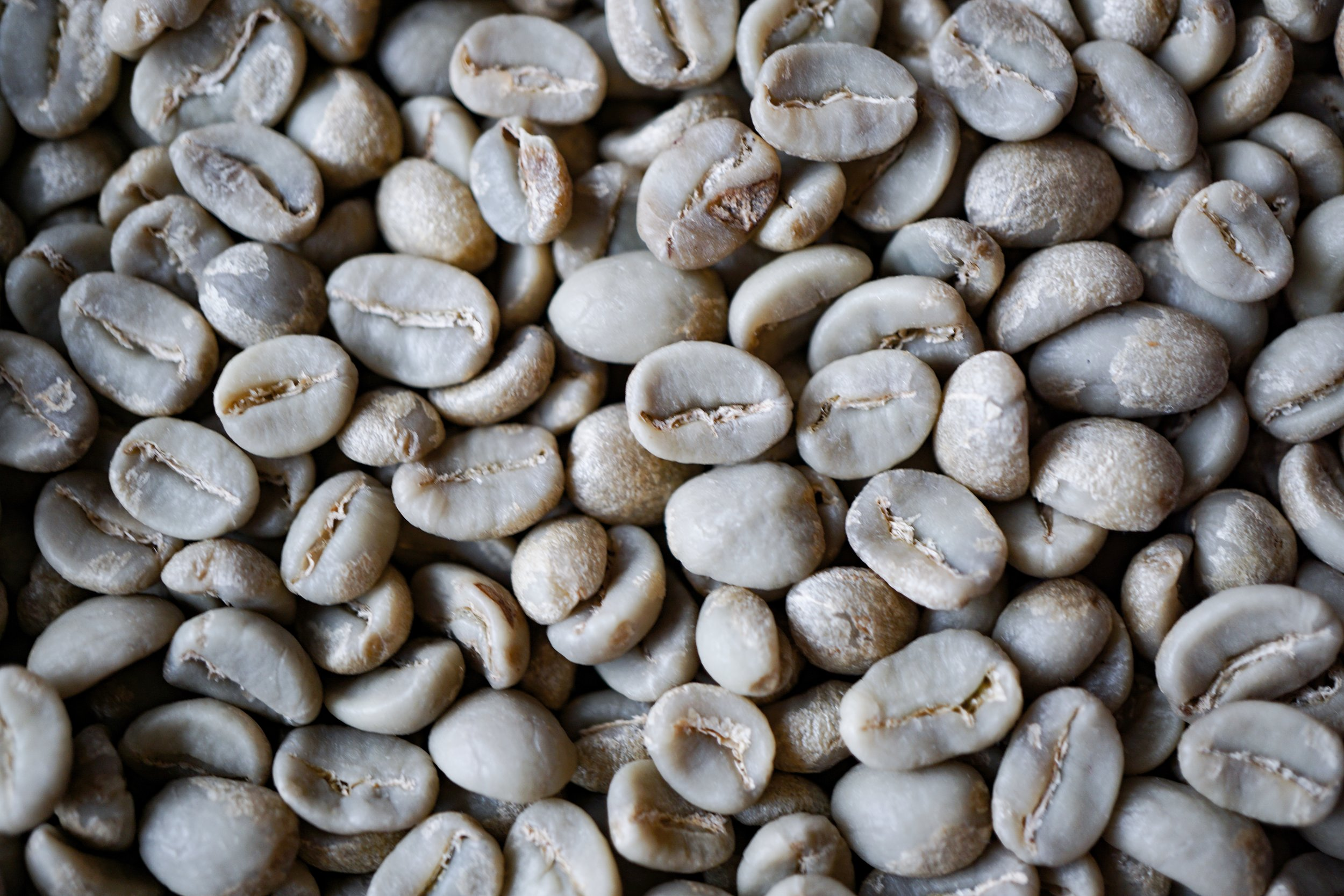 Green or raw coffee beans