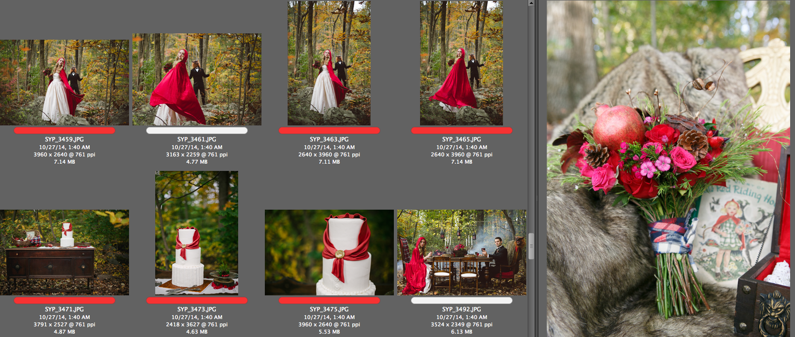 SYPhotography | Little Red Riding Hood submission