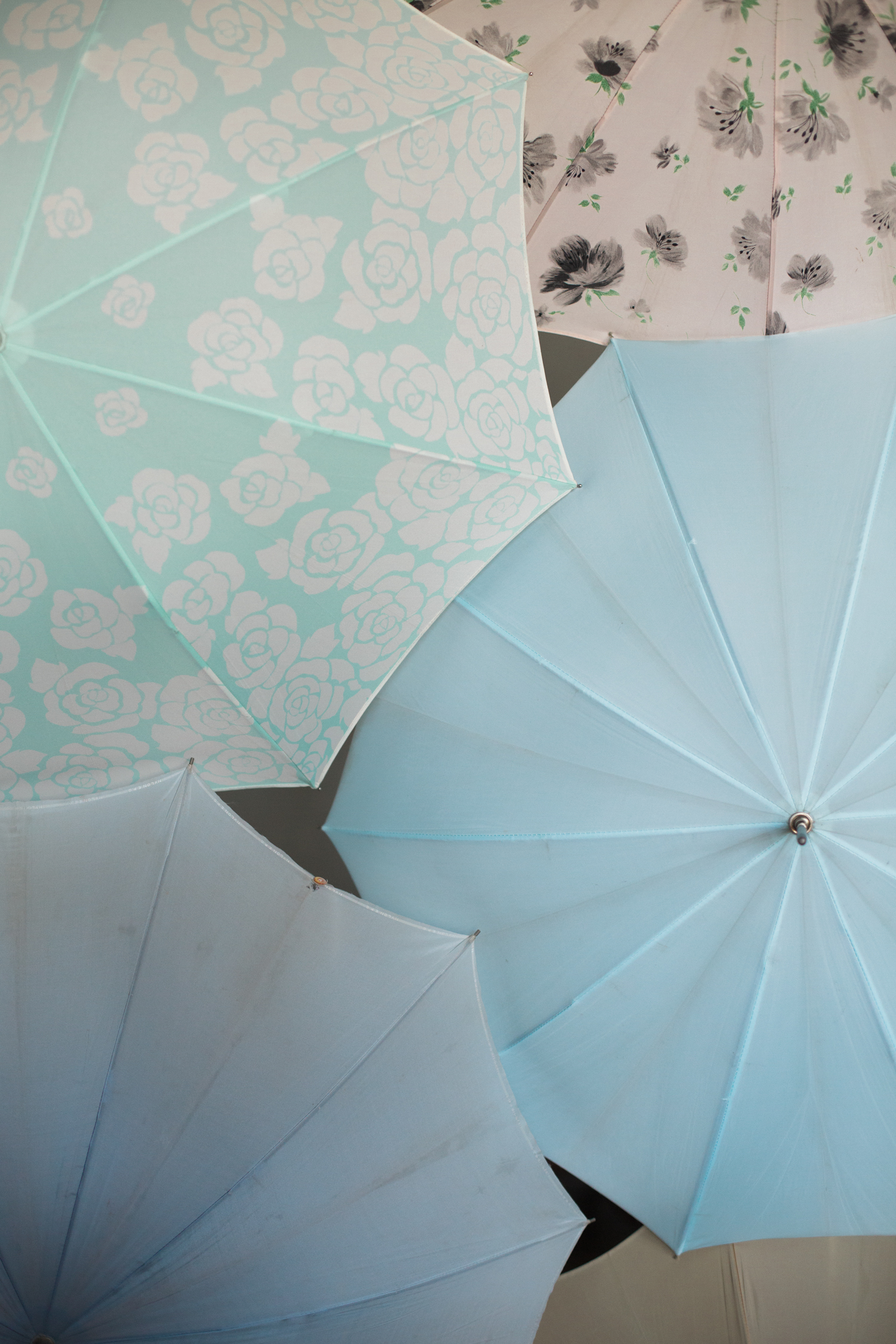 Bella Umbrella Vintage Collection For Rent | Alante Photography | Produced by Heather Sharpe of The Editor's Touch