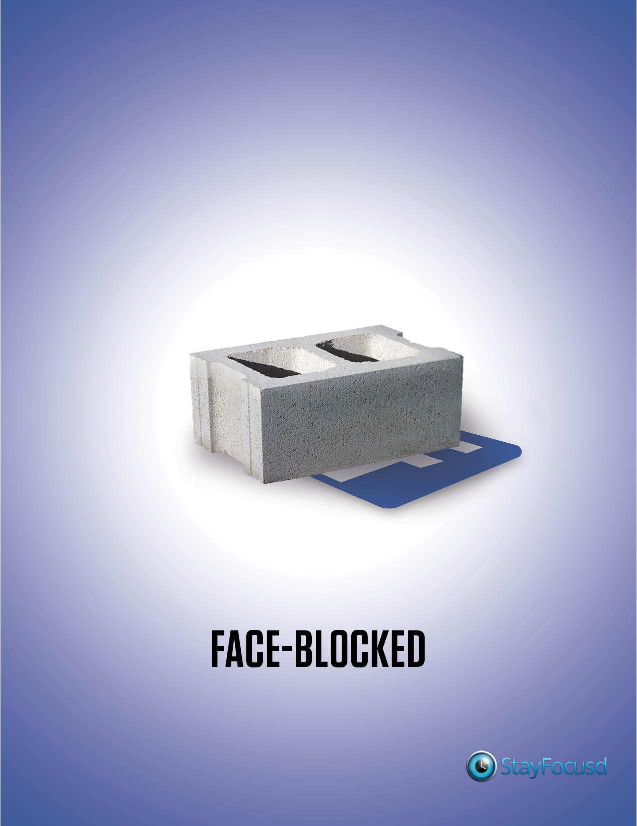 StayFocusd – Facebook (2014)