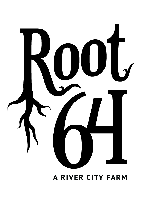 root64logo_F_02.jpg