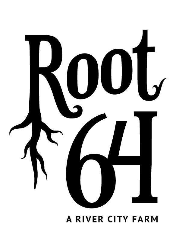 root64logo_F_01.png