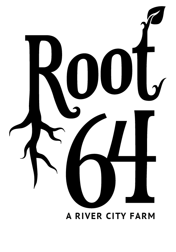 root64logo_F_03.png