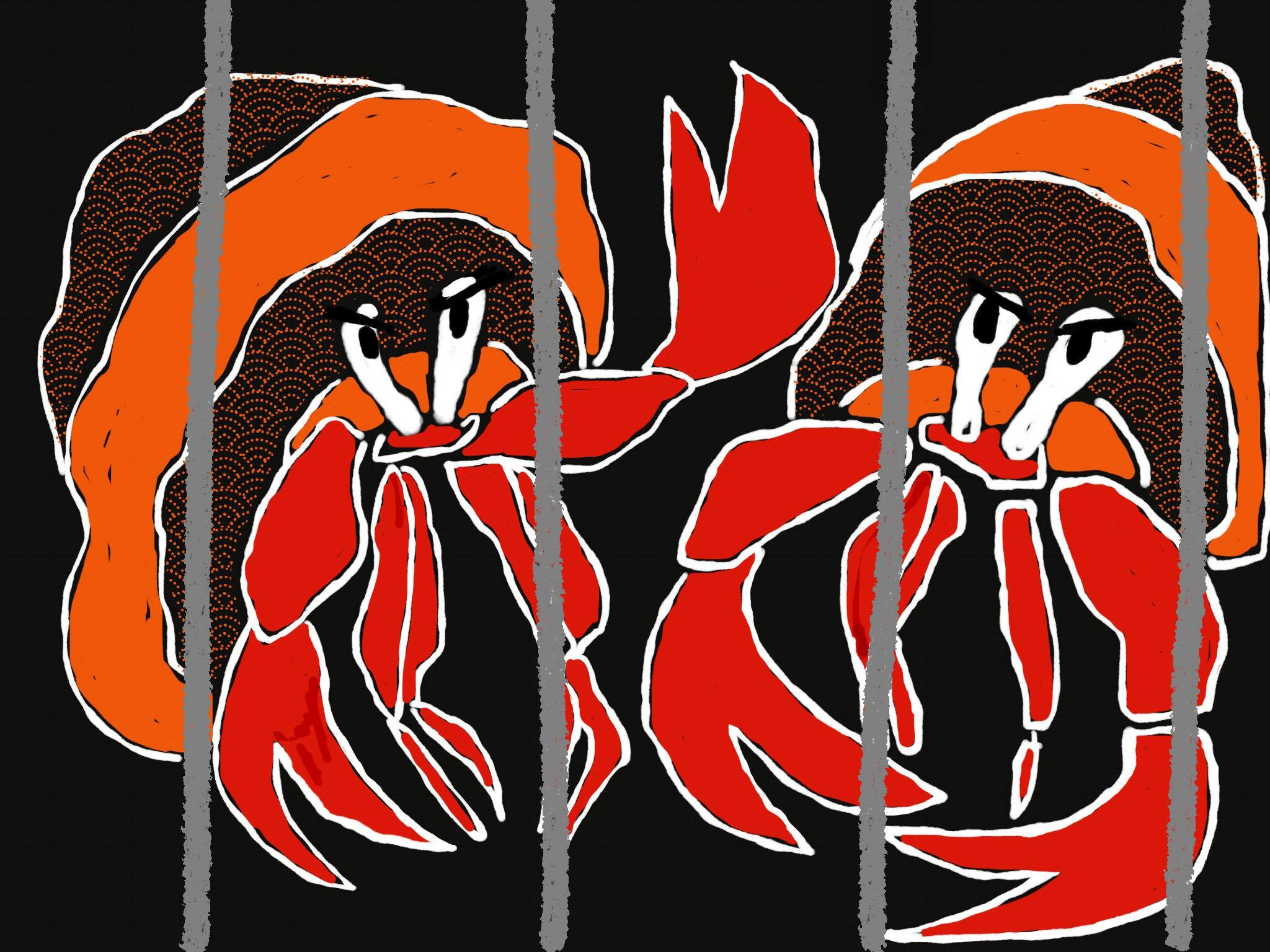 artwork inspired by  Evil Hermit Crabs , artist credit:Chilli Charlie