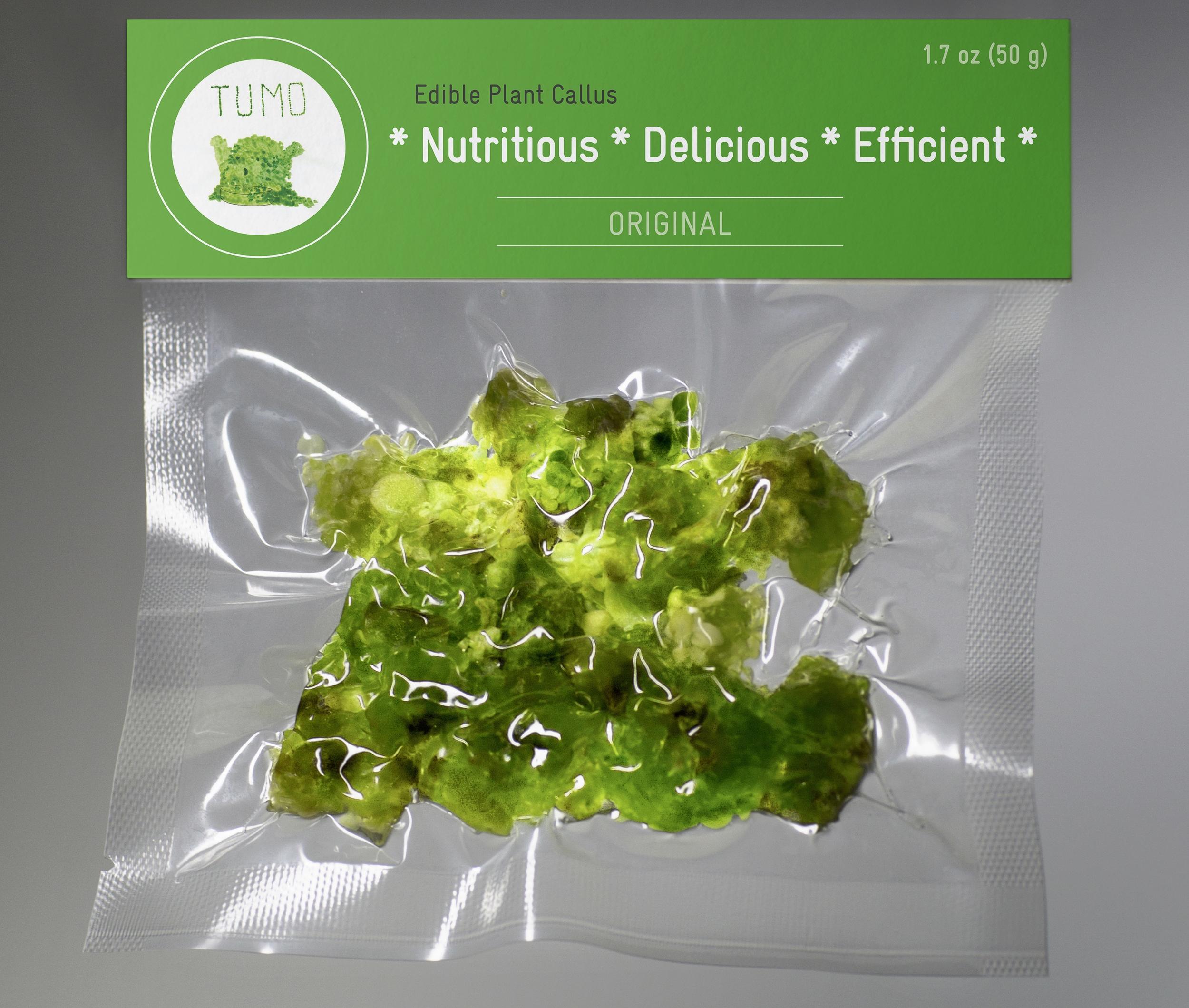TUMO - Edible Plant Callus - 3.jpeg