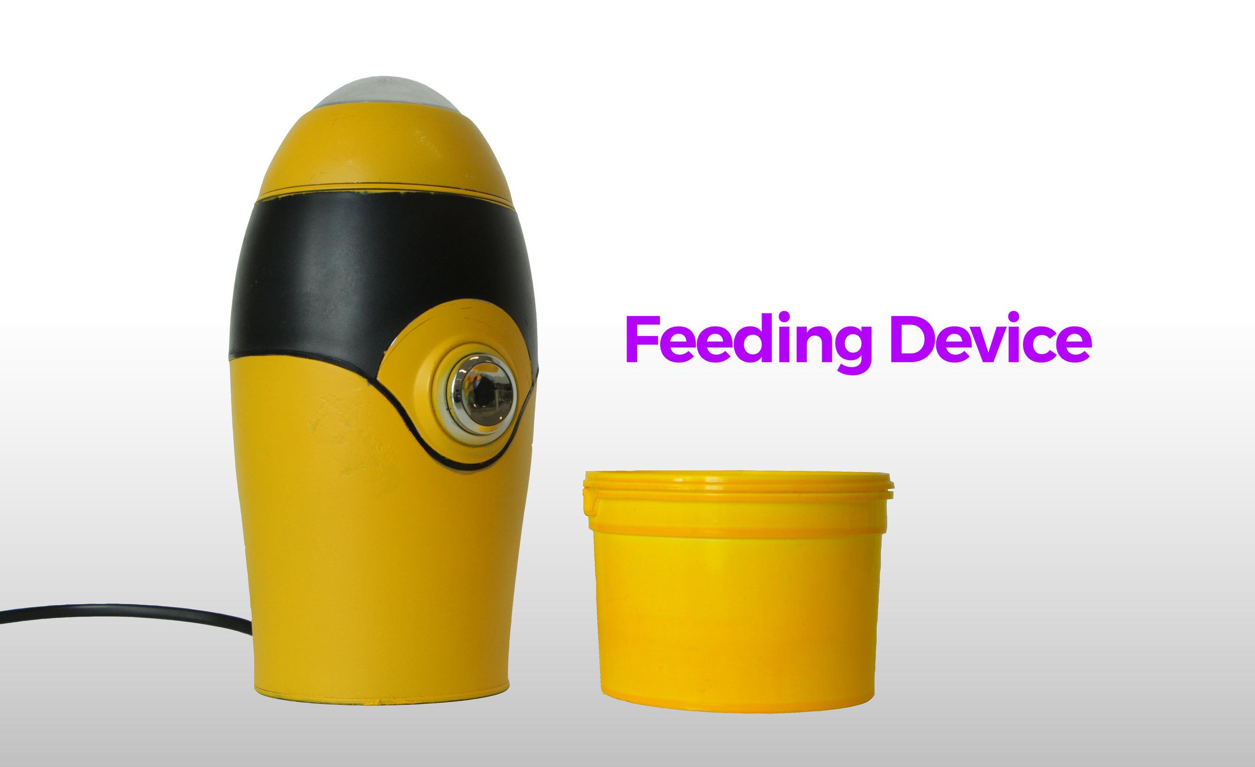 02_FEEDING.jpg