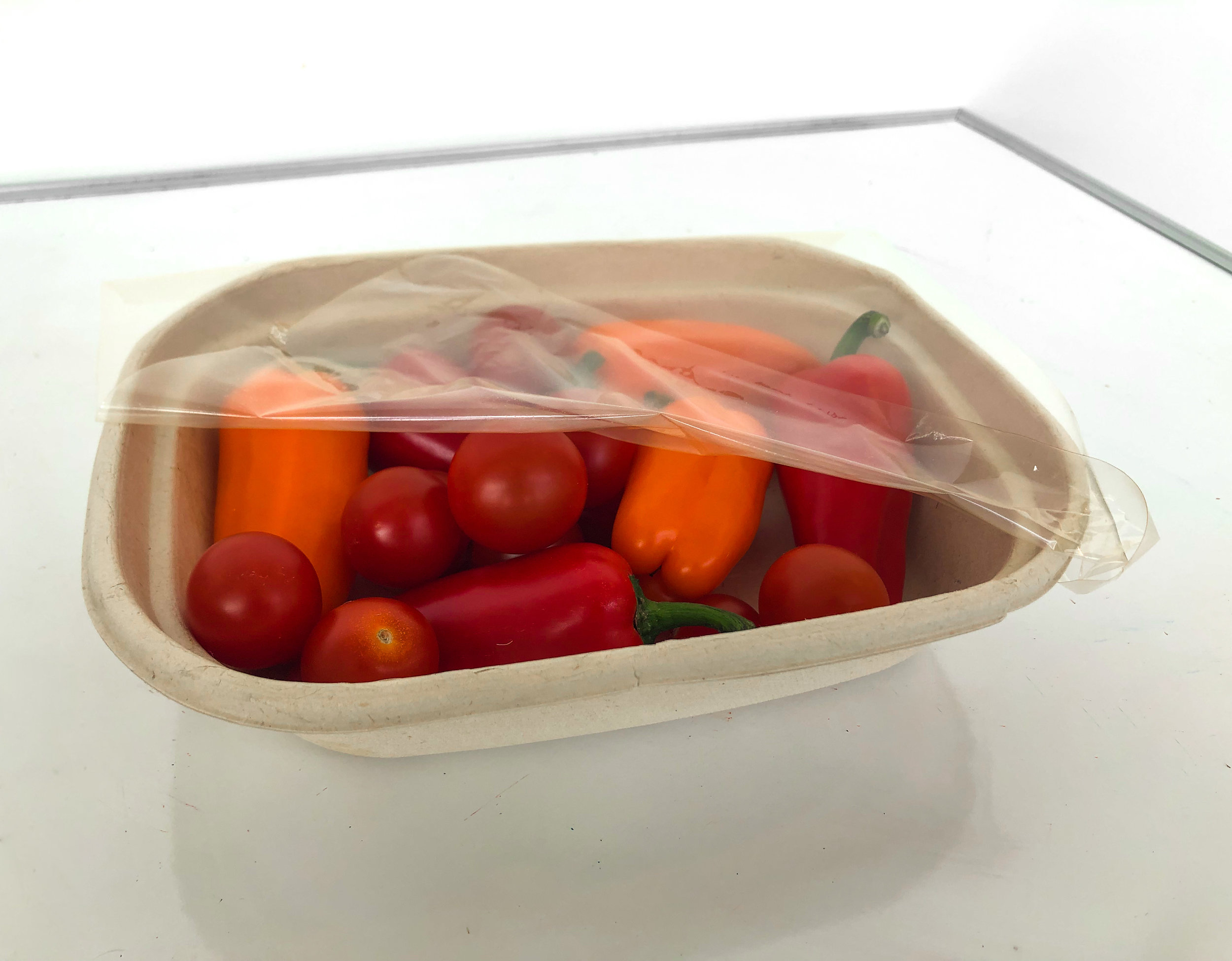 Compostable food packaging.jpg