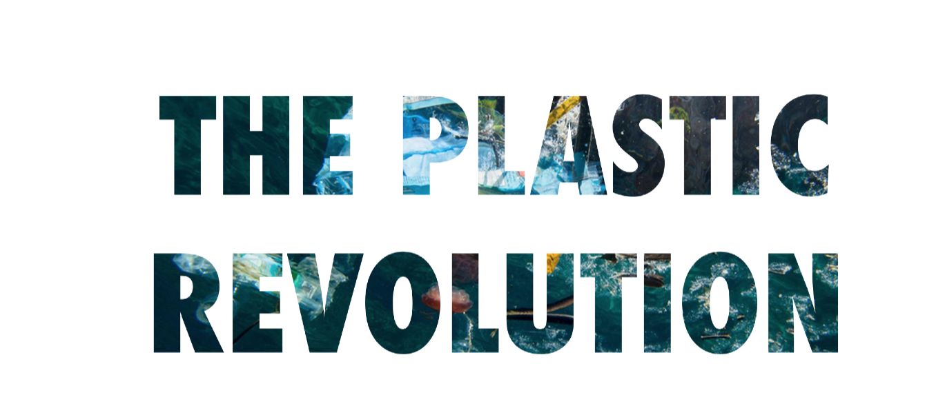 Plastic Rev 4.png