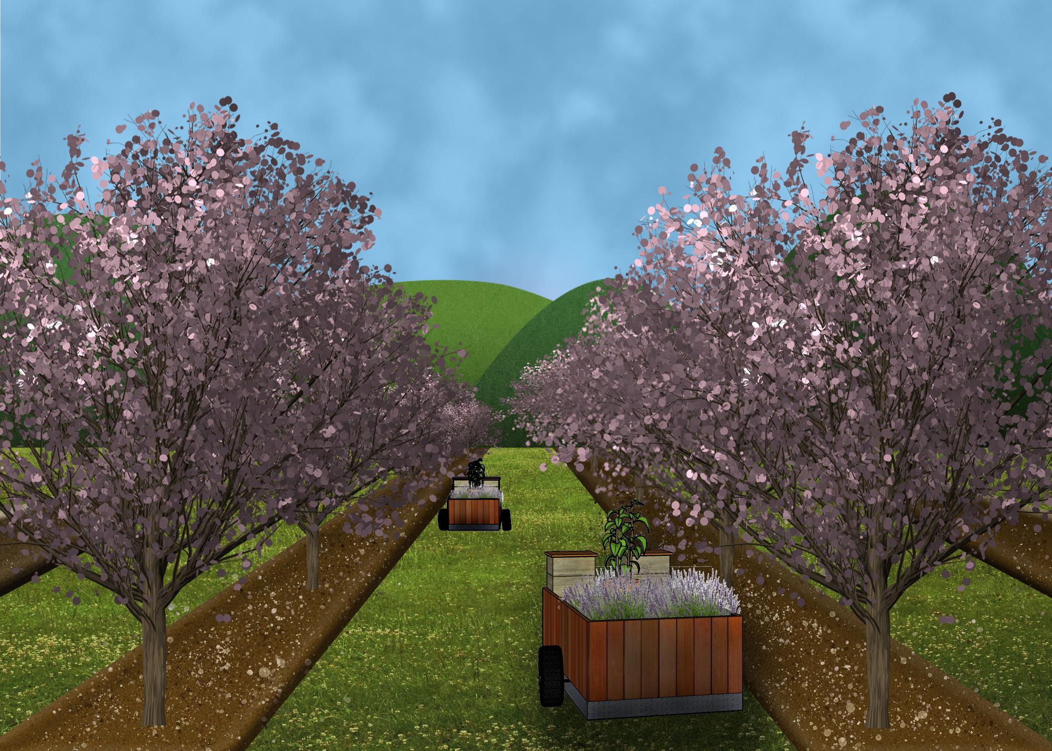 Orchard Oasis 3.jpg