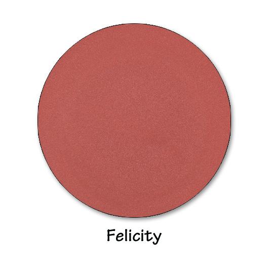 felicity copy.jpg