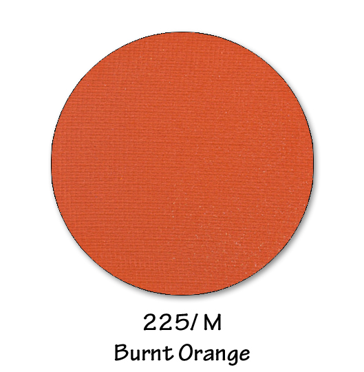 225- BURNT ORANGE.jpg