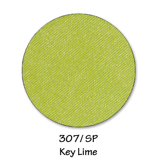 307- key lime copy.jpg