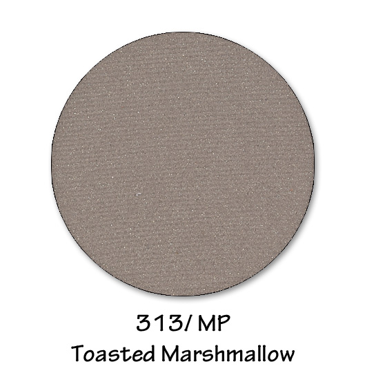313- toasted mashmallow.jpg