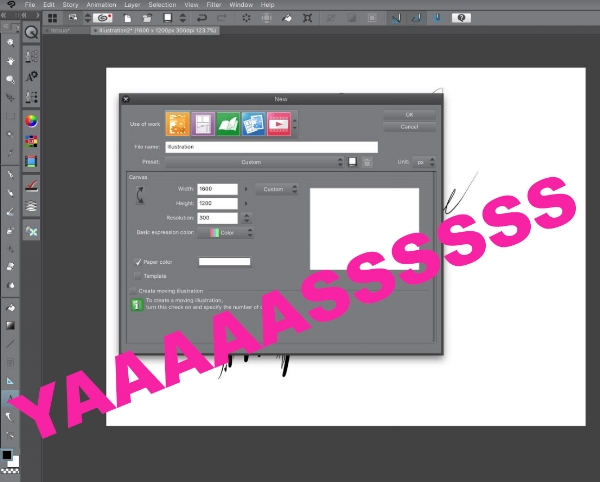Clip Studio Paint ipad Declare resolution.jpg