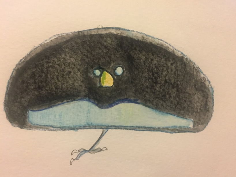 Bird of Paradise - Watercolor - Becky Jewell.png