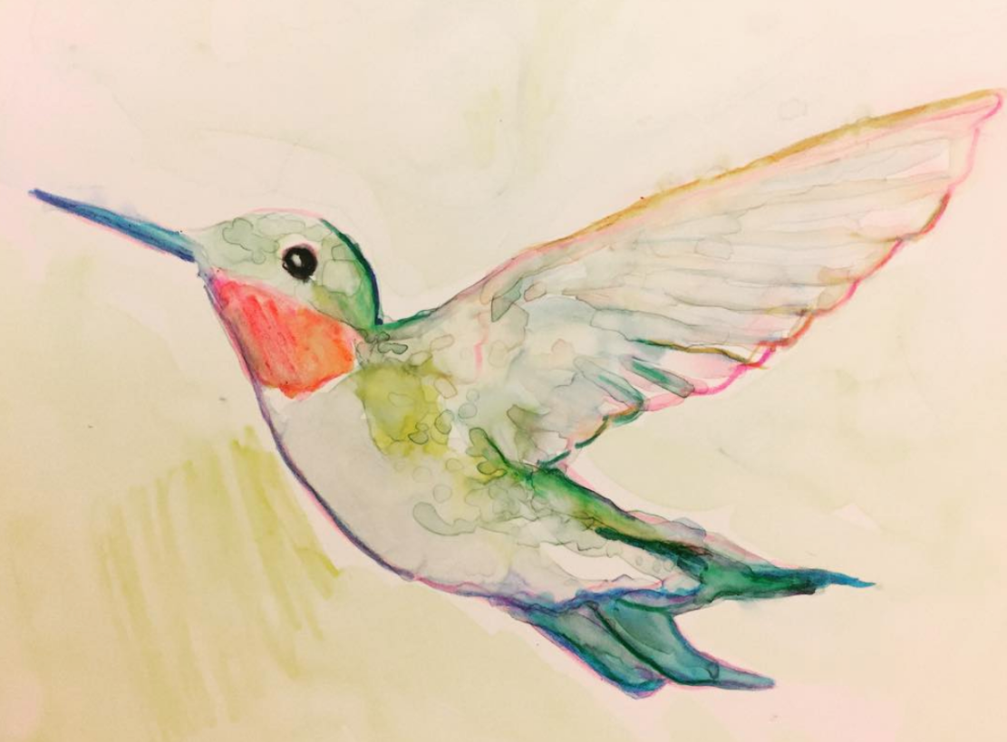 Ruby throated hummingbird - watercolor - artist Becky Jewell.png