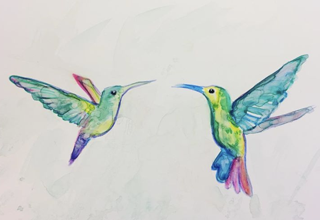 Hummingbirds watercolor - becky jewell.png