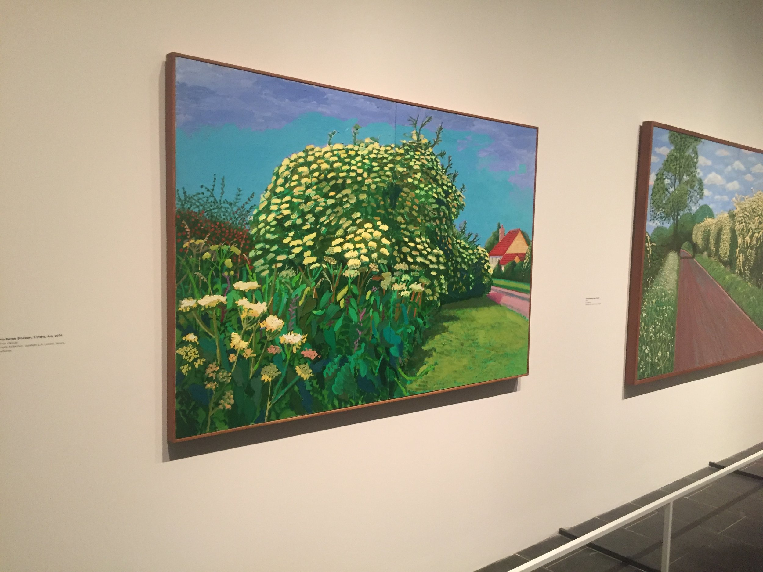David Hockney country flowers.JPG